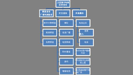 英国卫星数字电视业务结构图
