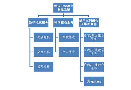 韩国卫星数字电视业务图示